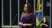 Deputada Luciana Santos